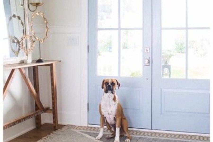 ออกแบบบ้านตามใจคนรักสัตว์เลี้ยง